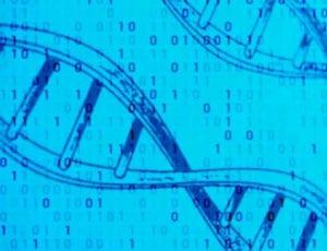 L'ADN est un support d'avenir pour archiver les mégadonnées