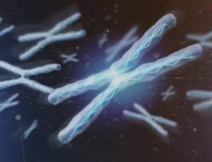 Deep Learning ADN
